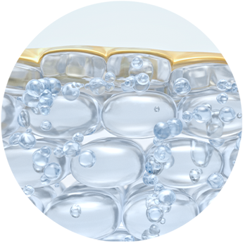 Zero H2O Technology™ Delivers hyaluronic acid more efficiently into skin's surface layer because it is 500X smaller than traditional HA** and travels 4X deeper, *** instantly plumping skin.